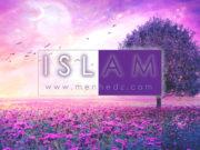 islam, islamski tekstovi, islamske fetve, muslimanka, fetve za žene