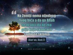Allah sve hrani